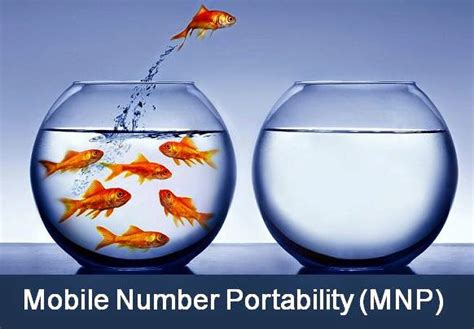 mobile portability number step by step guide for mobile number portability mnp process