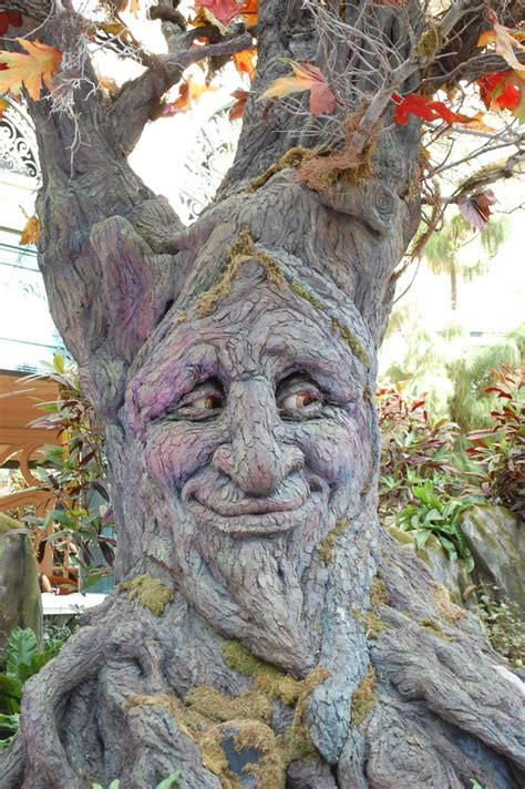 tree faces garden 25 best ideas about tree carving on tree