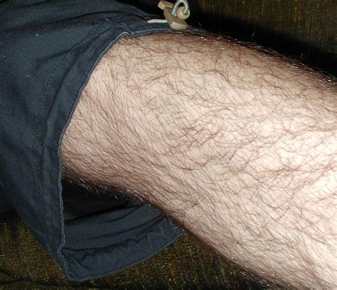 no pubic hair hairy leg men body hair
