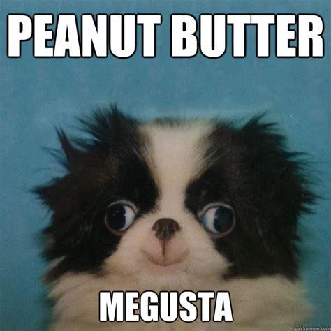 Butter Meme - welcome to memespp com