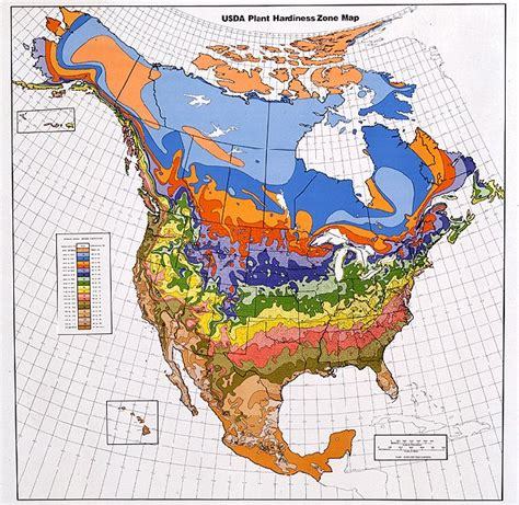 growing zone map pacific bulb society hardiness zone maps