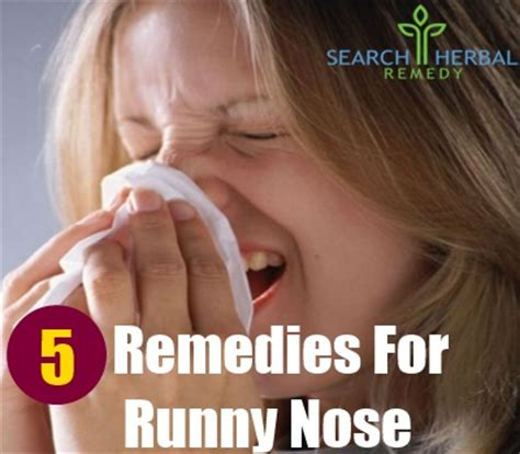 5 remedies for a runny nose treatments cure