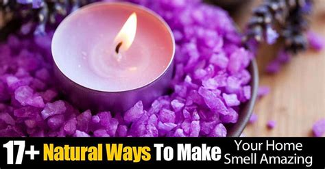 Can Detoxing Make Your Breath Smell by 17 Ways To Make Your Home Smell Amazing