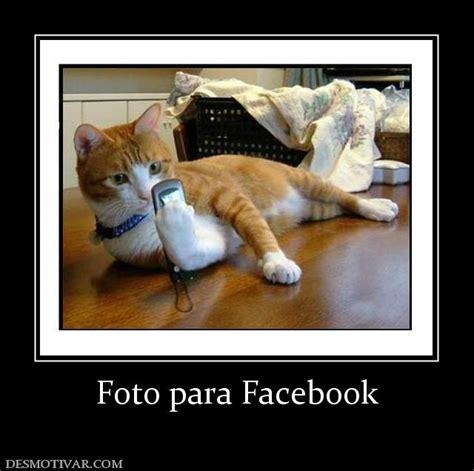 imagenes medicas para facebook desmotivaciones foto para facebook