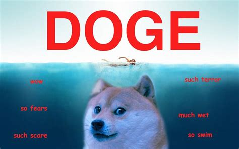 Doge Meme Pictures - doge wallpapers wallpaper cave