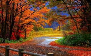 beautiful fall scenery fall colors