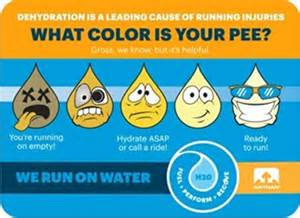 what color should my urine be the color of your urine will tell you how healthy you are