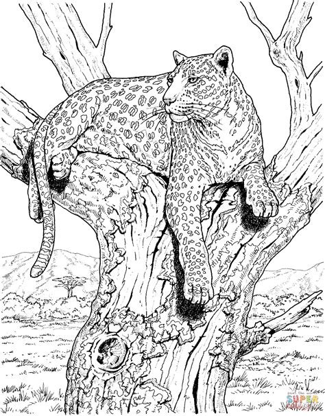 realistic tree coloring page leopard sits on tree coloring online