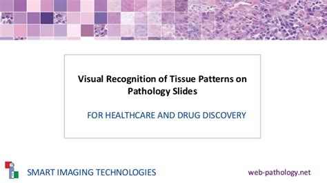 pattern recognition in artificial intelligence slideshare deep learning histology pattern recognition for healthcare