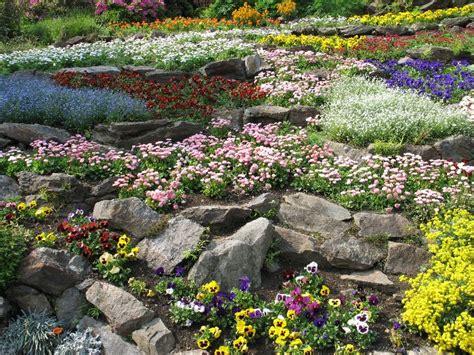 il giardino roccioso concerto di sogni concerto di sogni forums