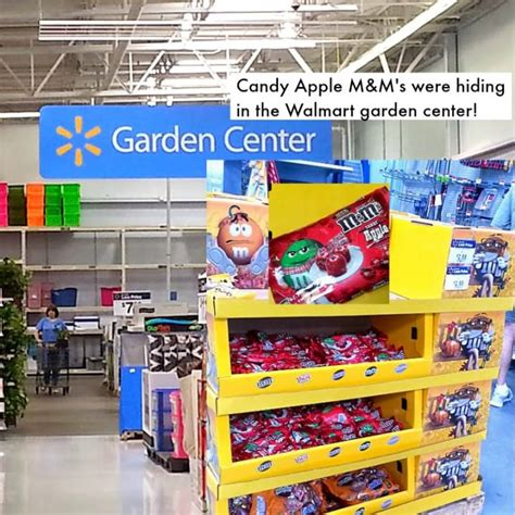 Garden Center At Walmart Peanut Butter M M Apple Sauce Cookies Flavoroffall