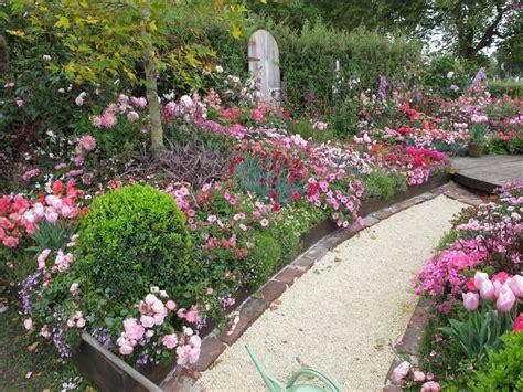 cottage garden pinks pink cottage garden nz garden cottage