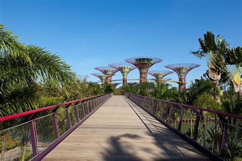 Garden Arch Singapore Spectacular Gardens By The Bay In Singapore Idesignarch