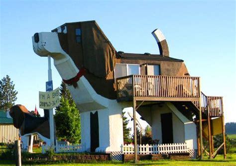 over the top dog houses unique homes and properties