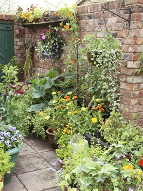 pot up a productive patio garden gardens decks and