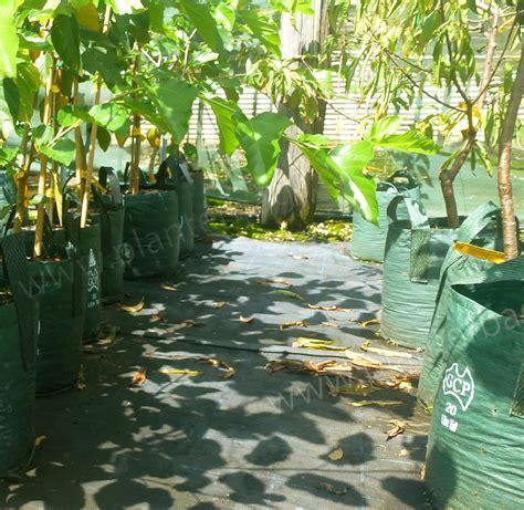 Garden Accessories Au 20 Litre Woven Planter Bags Nursery And Garden Supplies