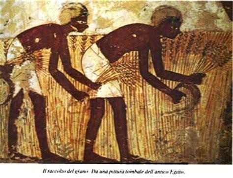 l alimentazione degli egizi antonio bruno esperto in diagnostica urbana e territoriale