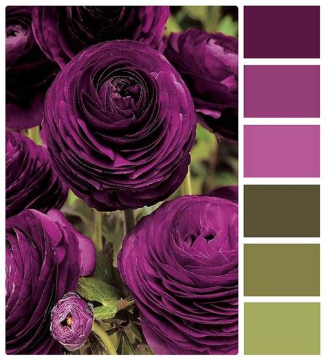 purple color combination 25 best color combinations images on pinterest home