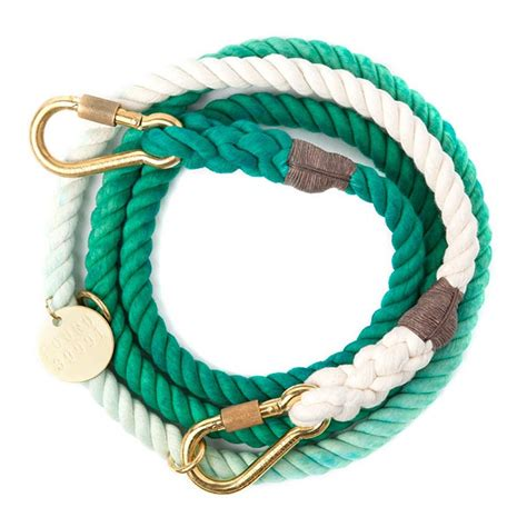 puppy leash age teal ombre rope leash found my animal coco pei