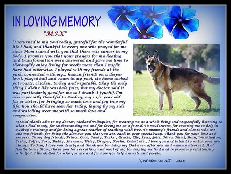 Animal Rescue Tribute by A Tribute To Max Saving Pets One At A Time Animal