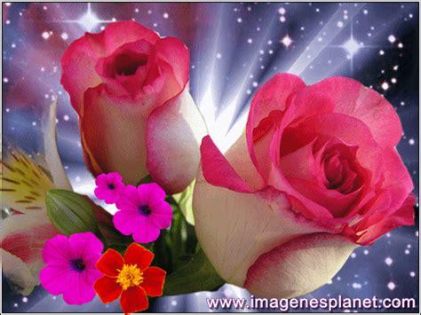 imagenes rosas enamorados imagenes romanticas gif 500 215 375 flores pinterest