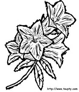 Galerry flower coloring page print
