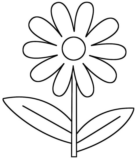 daisy flower d is for daisy flower coloring page