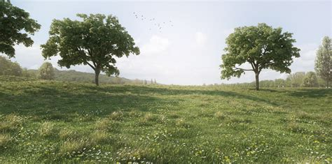 Architecture Visualization by Making Of The Meadow With Sketchup Amp Skatter 3d