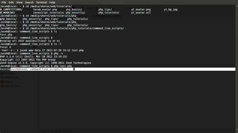 Tutorial Php Cli | php tutorial command line scripts part 00 introduction