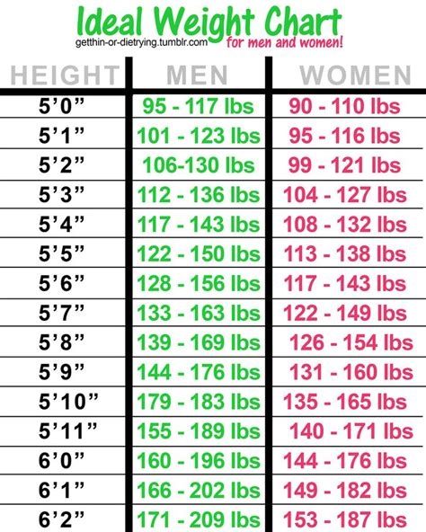 ideal picture height 17 best ideas about ideal body on pinterest lose weight