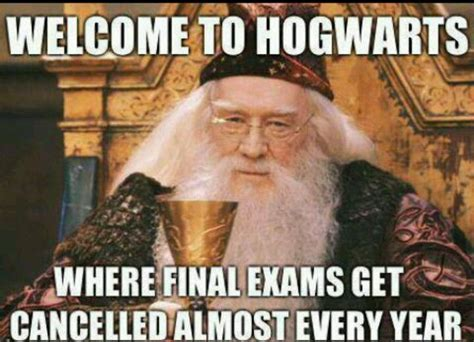 Dumbledore Memes - 35 best images about albus dumbledore on pinterest