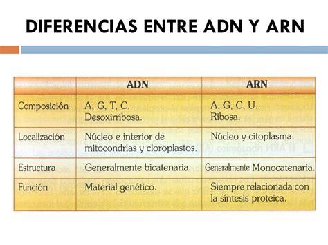 diferencia entre imagenes informativas y expresivas tema 6 los 225 cidos nucleicos ppt descargar