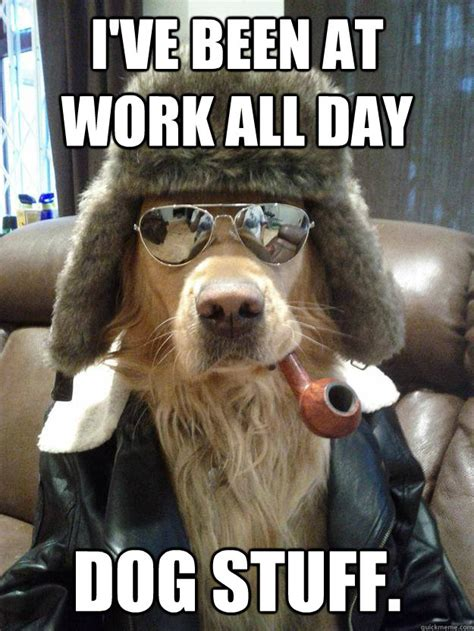 Fuck Bitches Get Money Meme - i ve been at work all day dog stuff overly suave dog