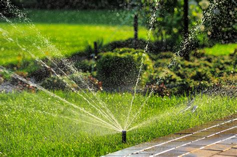 summer lawn care tips lawn care tips for summer sherlock landscaping