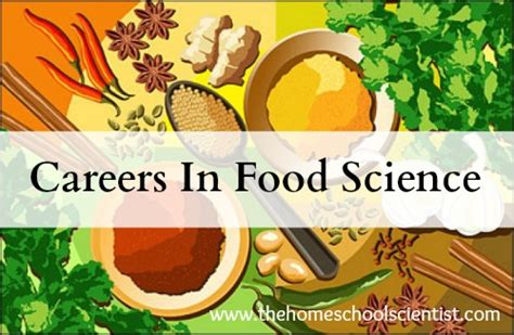 food business work and employment by pixelliebe a royalty careers in food science the homeschool scientist