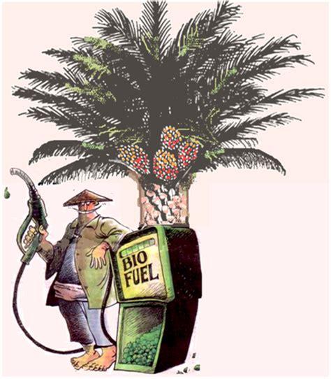 membuat biodiesel dari minyak kelapa the oil palm planters biofuel dari kelapa sawit