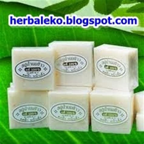 Jual Magic Bra Di Jogja toko herbal eko toko herbal palembang toko herbal