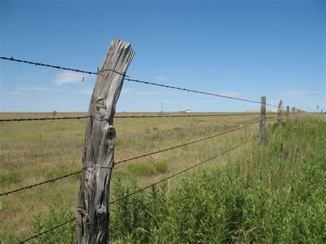 barbed wire fence settling the great plains inventions and adaptations