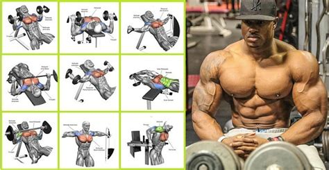 workout to get bigger chest and arms most popular