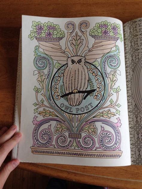 harry potter coloring book owl post colouring book harry potter amino