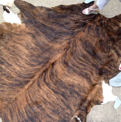 How To A Cowhide With Hair On hair on hide cowhides ebay