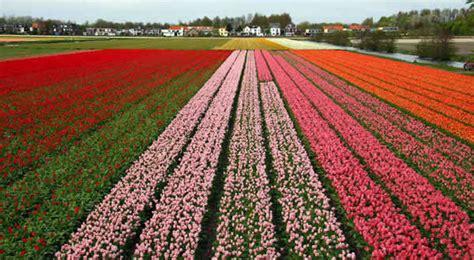 reiseversicherung wann abschließen niederlande klima wann nach den niederlanden reisen