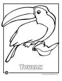 Endangered rainforest animals coloring pages endangered rainforest
