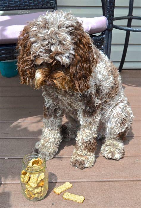 can dogs eat sweet potato skins sweet potato cookies a vegan