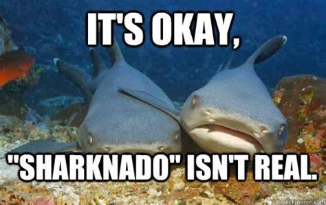 Sharknado Meme - image gallery sharknado meme