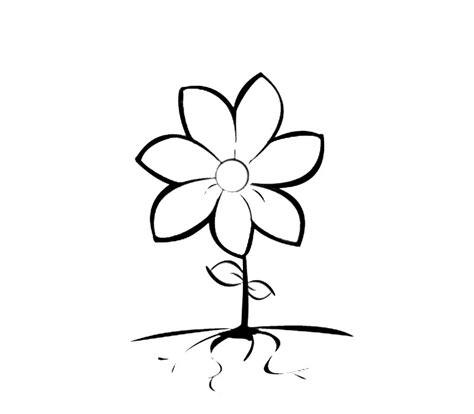 imagenes de flores sin pintar flor de siete p 233 talos para colorear recurso educativo
