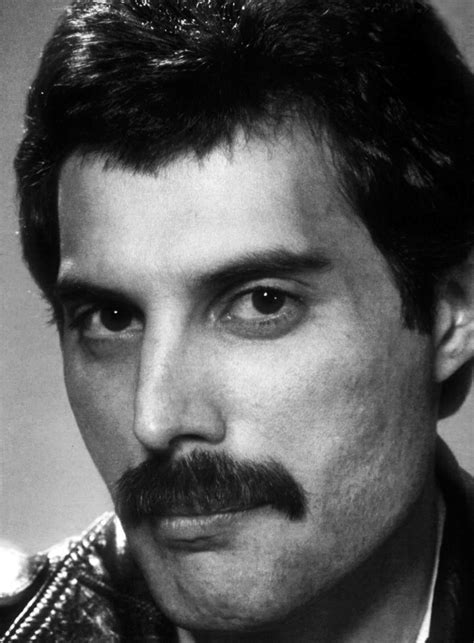 freddie mercury freddie mercury hq freddie mercury photo 31872932
