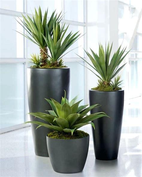 indoor plants india ceramic pots for indoor plants online india pots for large