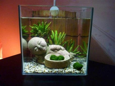 aquarium design homemade 1000 images about fish tank ideas tips and info on