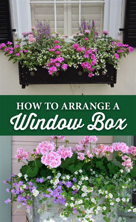 how to arrange flowers in the house best home news ll 20 gorgeous window box ideas adding floral magnificence to